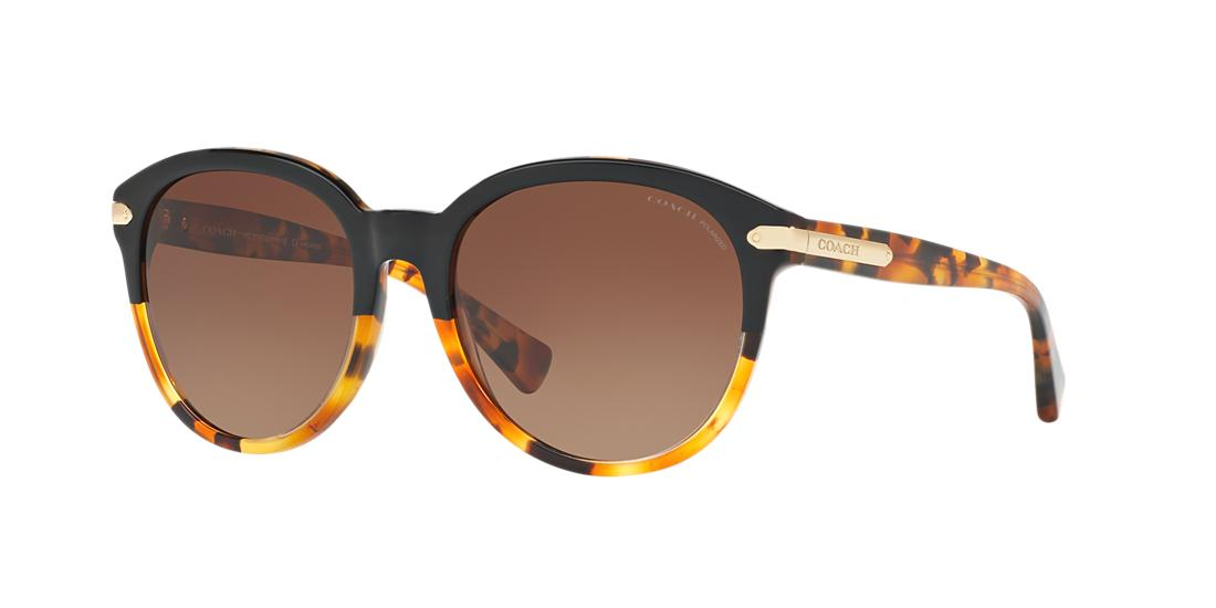 15f539eb3a Sunglasses - Coach Eyewear glasses and contact lenses superstore